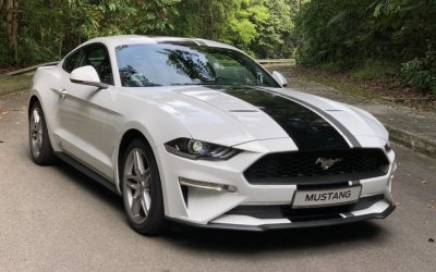 Ford Mustang: American thoroughbred