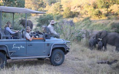 On safari in Kruger National Park