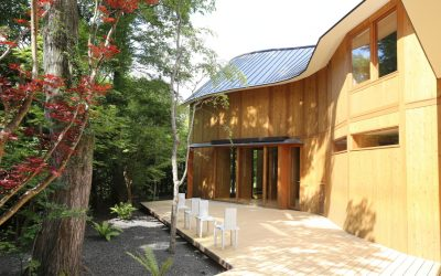 Shishi-Iwa's cedar and style